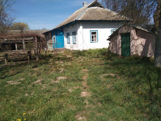 Дом в с. Павловка