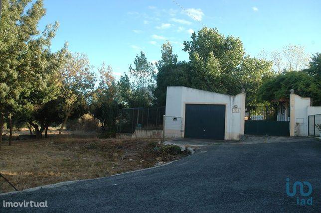 Terreno - 7879 m²