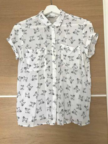 Koszula z krótkim rękawem HOUSE rozm. S 36 mopsy