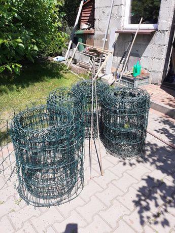 Siatka ogrodzeniowa ozdobna 65 cm