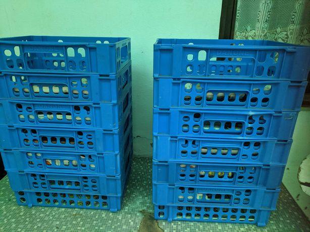 Caixas empilháveis  para agricultura em plástico