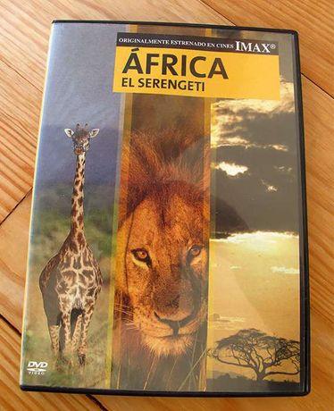 DVD África EL Seregenti