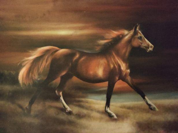 Obraz na płótnie ręcznie malowany galopujący koń 1989 Z.Sampolski