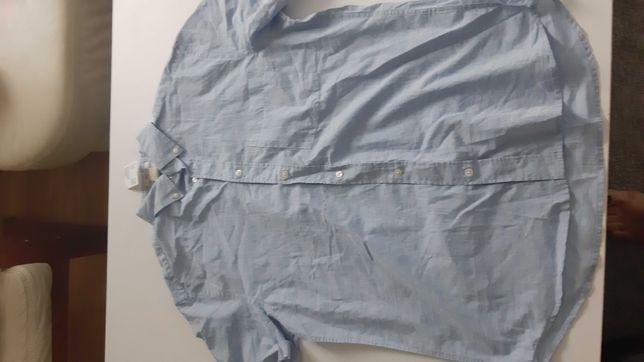 Koszula meska HM blekitna rozmiar M krotki rekaw TANIO