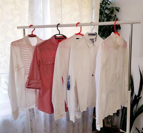 Zestaw koszul damskich