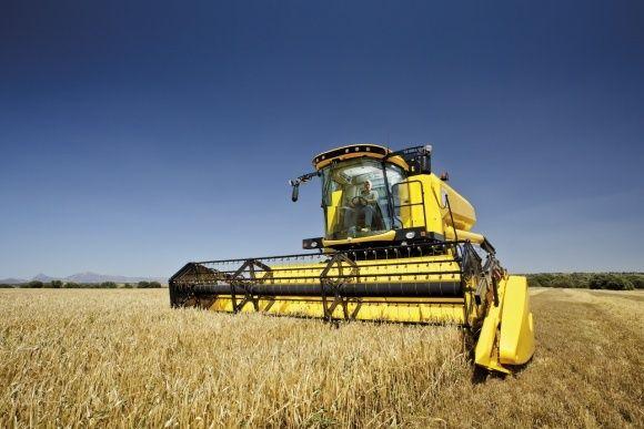 Покупаем зерновые, Пшеница, Подсолнух, Рапс и тд.