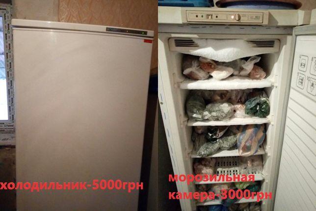 Продам холодильник и морозильную камеру вместе либо по отдельности