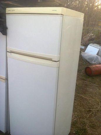 холодильник 2-х камерный Privilleg Германия 170см