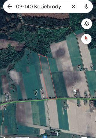 Ziemia rolna w Koziebrodach