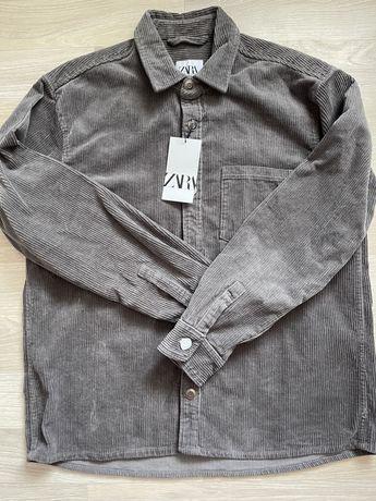 Чоловічі сорочки від Zara