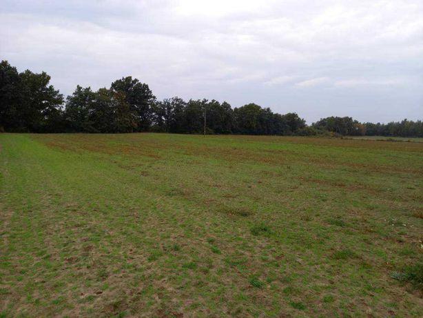 Ziemia rolna w okolicach Wyszogrodu