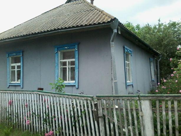 Продам дом в селе Лызогубова Слобода