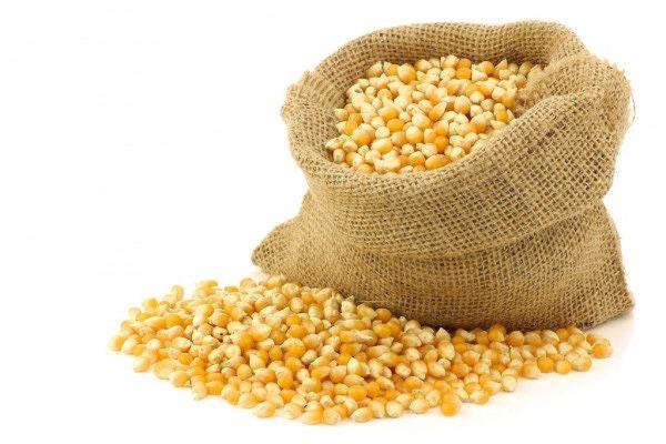 Кукурудза суха 2020 р.