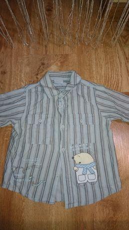 Koszula rozmiar 86