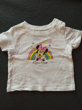 Koszulki Reserved, Sinsay, myszka Minnie 62