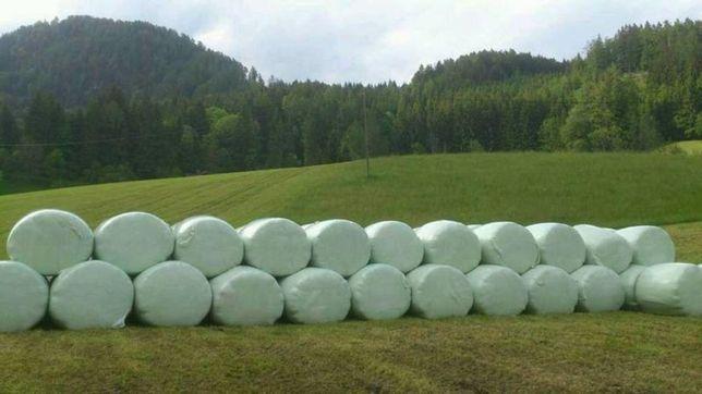 Sianokiszonka z koniczyny baloty 2020 z gospodarstwa ekologicznego