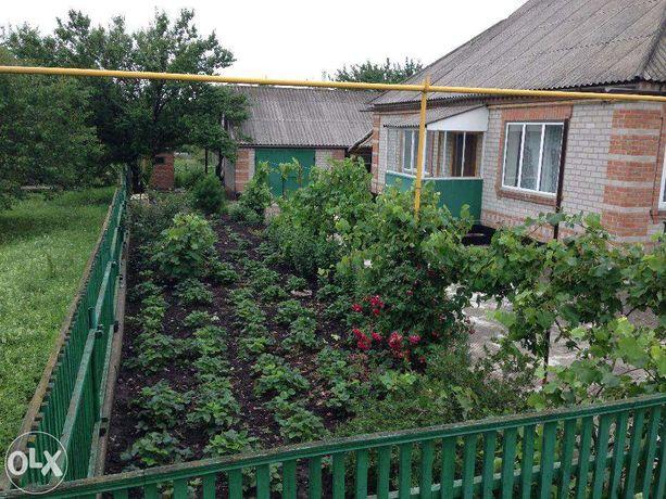 Будинок в смт Новгородка