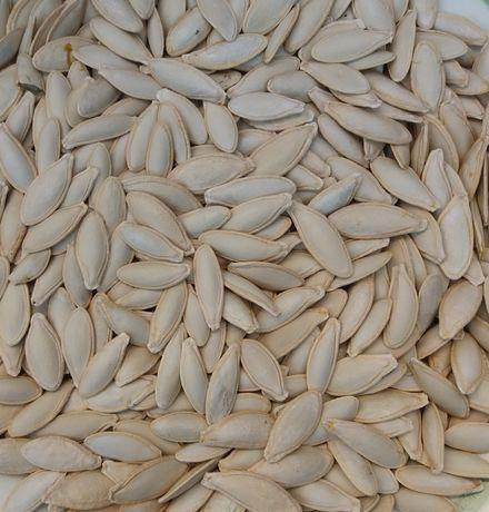 Семечка тыквы Болгарка/тыква/семечка/масляная семечка/семена