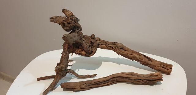 Korzeń korzenie do akwarium