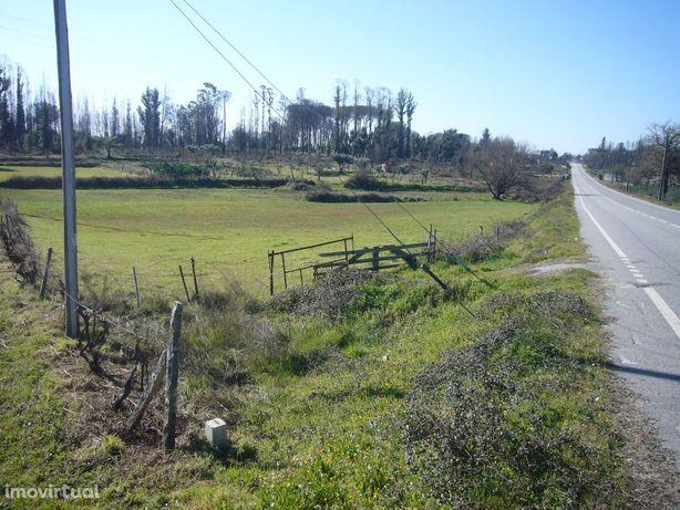 Terreno rústico, 12220m2, Vila Franca Da Beira