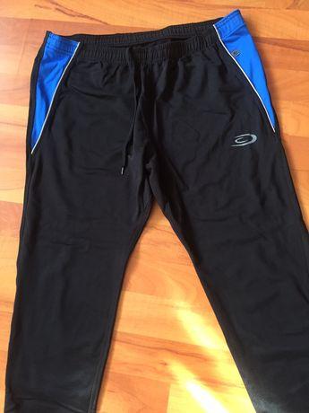 Спортивные штаны, легинсы