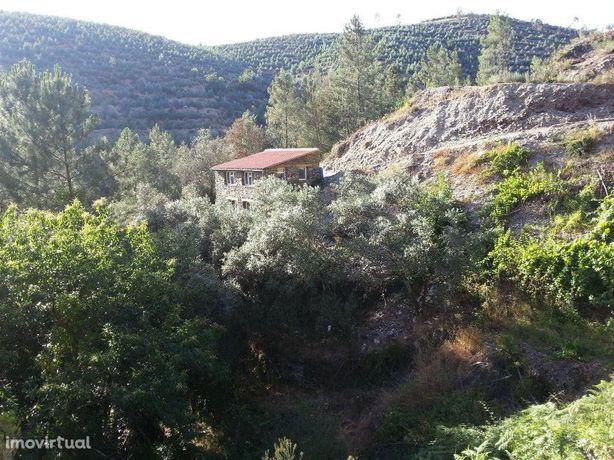 Quinta da Ribeira .  localizada a 2 km do centro da Benfeita
