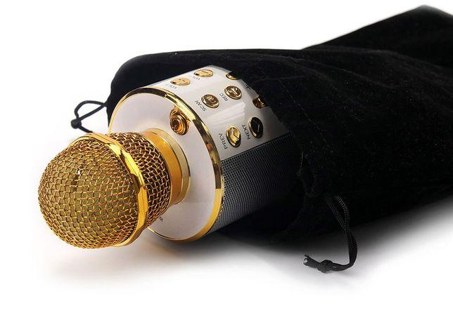 Беспроводной Караоке Микрофон Wster WS-858 со встроенной колонкой