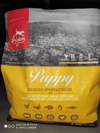 Karma sucha dla szczeniąt Orijen Puppy