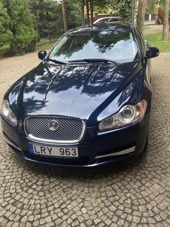 Wynajem limuzyny do ślubu Jaguar XF 4.2 transport osób klasa premium