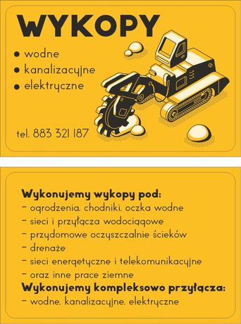 Minikoparka-usługi