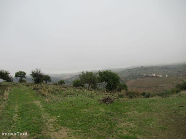 Terreno rústico, 63856m2, Almendra
