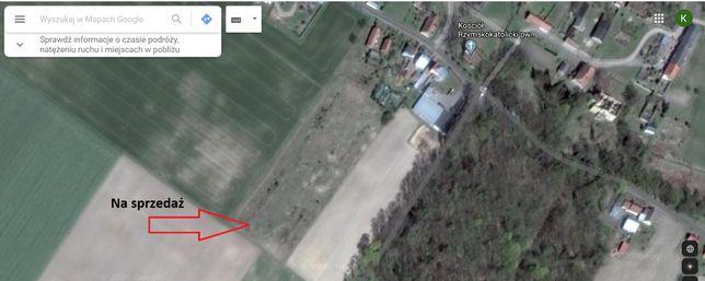 działka budowlana w Łęgowie, okolice Sulechowa
