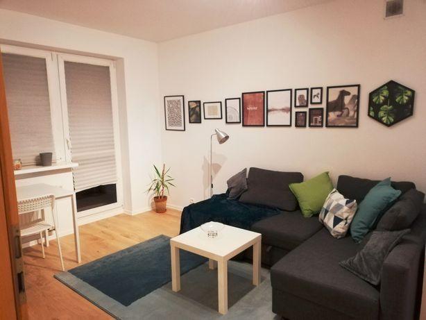Mieszkanie do wynajęcia dla studentów Górczyn