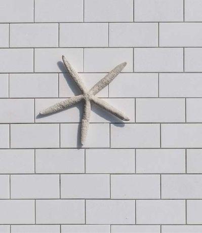 Mozaika Marmurowa Thasos Biała 5x10cm