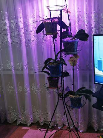 Напольная кованая подставка для цветов на 7 чаш