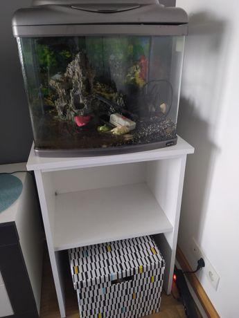 Akwarium 60l z szafką i wyposażeniem PILNIE