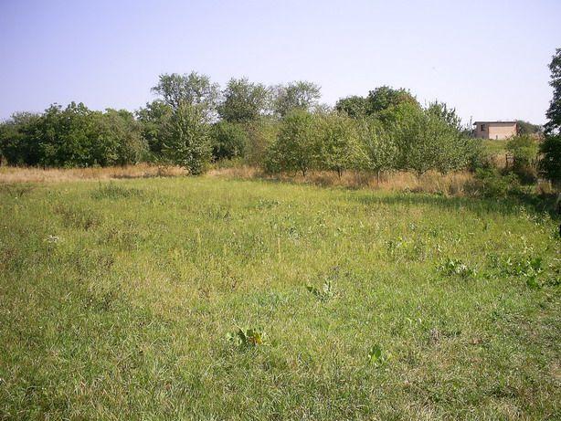 Дорогинка, 50 км від Києва, ділянка для забудови 16.5 соток