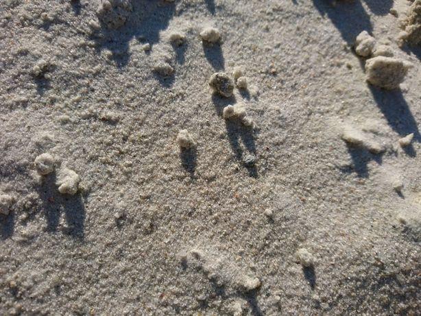 Piasek piach płukany do miksokreta miksokret cana za tonę