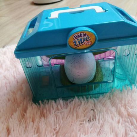 Little Live Pets, Kurczaczek z domkiem, zabawka interaktywna