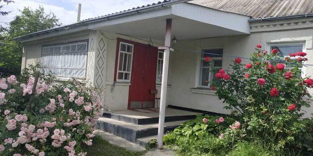 Продам будинок в Ставищенському районі (Кривець)