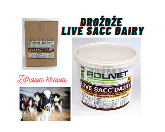 Drożdże -Live sacc dairy