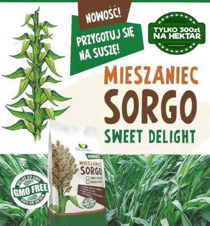 Mieszaniec trawy sudańskiej i sorgo SWEET DELIGHT, Nutri Honey