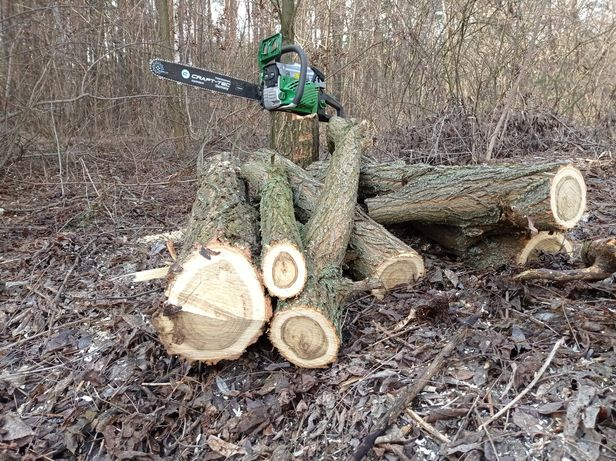Спил, распил деревьев, обрезка сада, уборка территории.