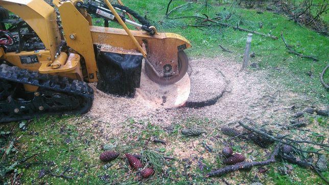 Limpeza de terrenos, Florestal ou não