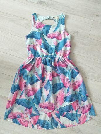 Letnia sukienka w papugi, H&M, rozmiar 152