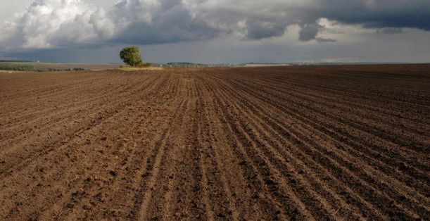 Продам земельные паи (сельхозназначение) Гуляйполе