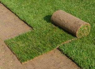 Trawa z rolki trawnik w rolkach trawniki rolowane. Gotowy trawnik.