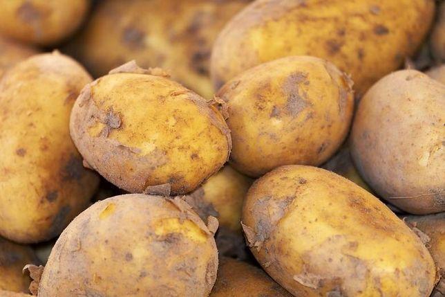 Ziemniaki Mlode Polskie