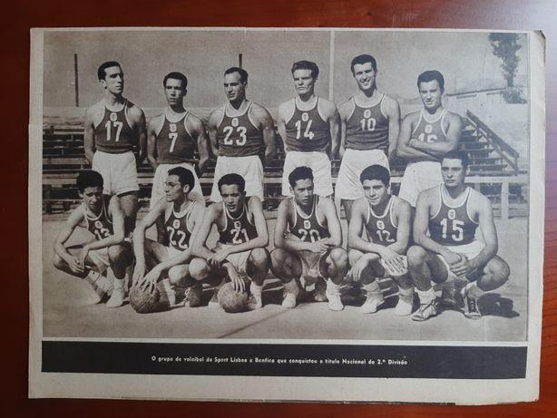 Separata Desportos do Cavaleiro Andante (1953) - SL Benfica voleibol