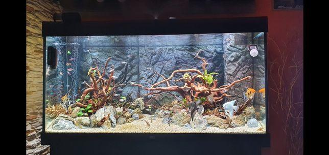 Zestaw akwariowy Juwel Rio 350